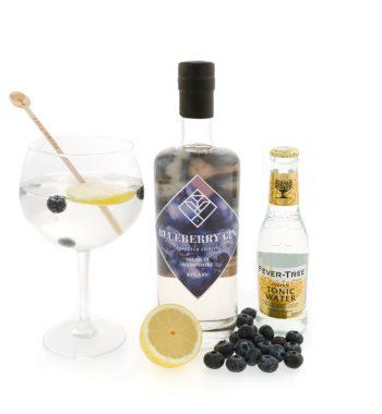 Farleigh Spirits Blueberry Gin (05)